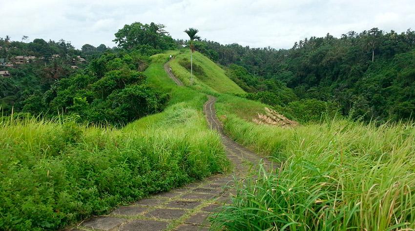 Campuhan Ridge Walk - Bali - Viaje en Mochila