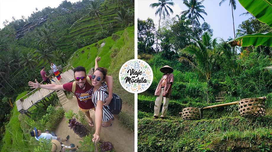 Terrazas de arroz Tegallalang - Viaje en Mochila