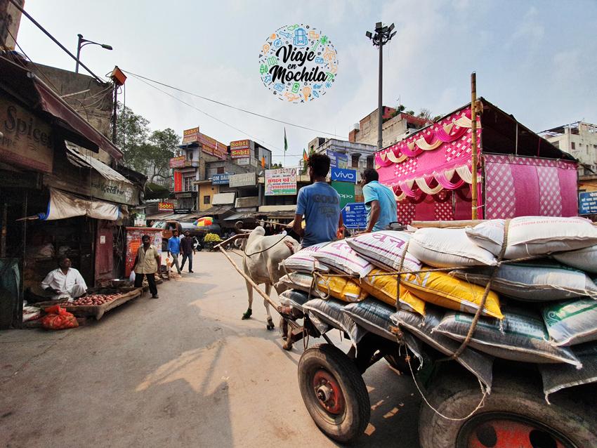 Viaje en Mochila - viajar a Delhi