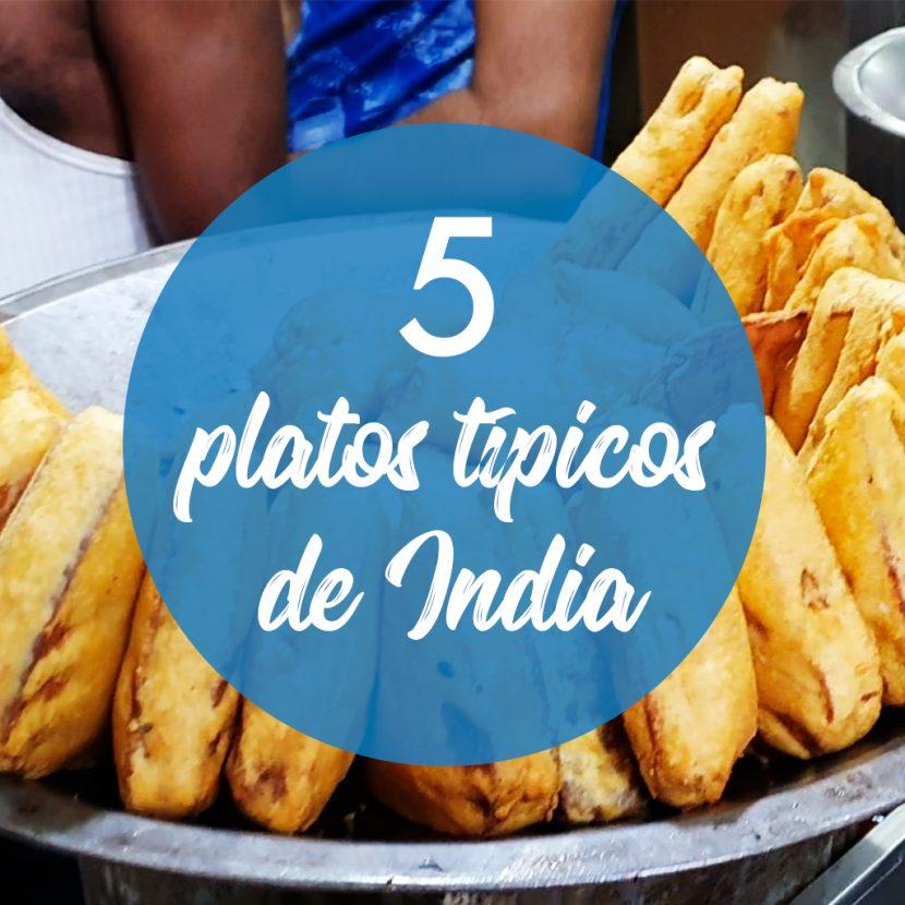 5 platos típicos de la comida de India - Viaje en Mochila